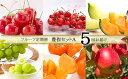 【ふるさと納税】FY19-613【令和2年産先行予約】定期便...