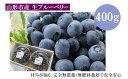 【ふるさと納税】FY18-203 山形の完熟生ブルーベリー約400グラム(200グラム×2パック)