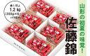 【ふるさと納税】FY19-188 山形市産佐藤錦 1.2kg...