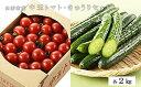 【ふるさと納税】FY19-192 山形市産 中玉トマト2kg...