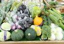 【ふるさと納税】 FY18-241 山形農協 山形市農産物詰...