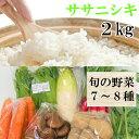 【ふるさと納税】A01-102 田和楽のササニシキ2kgと庄内産旬の野菜セット