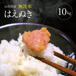 【<strong>ふるさと納税</strong>】<strong>無洗米</strong> はえぬき 5kg×2袋 計10kg 令和元年産米 山形県産 ※着日指定不可