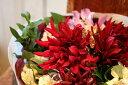 【ふるさと納税】花福)年4回、四季を楽しむ酒田のお花をお届けします。