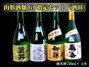 【ふるさと納税】山形酒類GI指定セット(酒田)純米酒4本セッ...