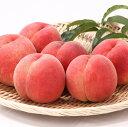 【ふるさと納税】厳選 白桃 たっぷり5kg 硬めの品種おまかせ 秀品(12~20玉)