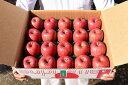 【ふるさと納税】農家こだわり『有機肥料栽培』りんご5kg 秀...