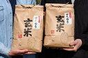 【ふるさと納税】山形県産 はえぬき 玄米 10kg(5kg×2袋)2020年産新米 ≪こだわりの自家