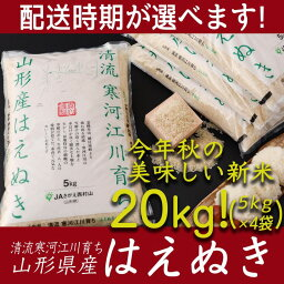 【<strong>ふるさと納税</strong>】たっぷり新<strong>米</strong>20kg! 「清流寒河江川育ち 山形産はえぬき」 令和元年産