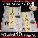【ふるさと納税】つや姫 10kg ≪ 特別栽培米だから安心安...