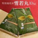 【ふるさと納税】最高ランク特A! 山形県産 「雪若丸」 10kg(5kg×2袋) ≪特別栽培米だから...