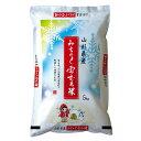 【ふるさと納税】雪むろ米 H29年産米「はえぬき」10kg