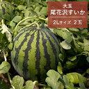 【ふるさと納税】先行予約 大玉すいか 2019年産「尾花沢す...