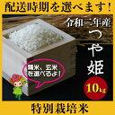 ショッピング玄米 【ふるさと納税】 米 10kg つや姫 特別栽培米 精米 玄米 令和2年産 2020年産 山形県村山市産 送料無料