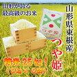 【ふるさと納税】A-114 東根産米「つや姫」25kg