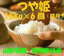 【ふるさと納税】D-96 ☆特別栽培米「つや姫」15kg×6...