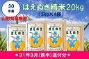 【ふるさと納税】A-333 30年産はえぬき精米20kg(3...