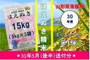 【ふるさと納税】A-460 30年産はえぬき精米15kg(3...