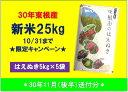 【ふるさと納税】A-574 30年産[精米]はえぬき25kg...