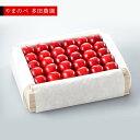 【ふるさと納税】《先行予約》2021年 特選真夏のルビー紅姫 桐箱詰 2Lサイズ以上 約500g 「やまのべ 多田農園」 F20A-791