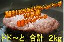 【ふるさと納税】【期間限定増量】 国産牛肉100%ハン