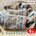 【ふるさと納税】たまやの山菜そばセット FYN9-289