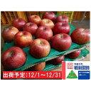 【ふるさと納税】12月 特別栽培 訳ありサンふじ約10kg ...