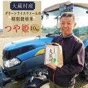 【ふるさと納税】グリーンライスファームの特別栽培米 つや姫10kg