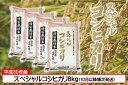 【ふるさと納税】【C-249】庄内町産スペシャルコシヒカリ8...