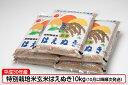 【ふるさと納税】【C-250】平成30年庄内産特別栽培米玄米...