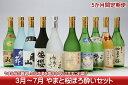 【ふるさと納税】庄内の地酒定期便 やまと桜ほろ酔いセット(3...