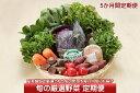 【ふるさと納税】新鮮野菜5か月定期便!産直施設「あっでば」直...