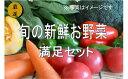 【ふるさと納税】No.1001 大人気!旬の新鮮お野菜 満足セット(詰め合わせ)