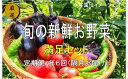 【ふるさと納税】No.1004 大人気!旬の新鮮お野菜 満足セット(詰め合わせ)【定期便6回】