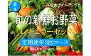 【ふるさと納税】No.1006 大人気!旬の新鮮お野菜 レギュラーセット(詰め合わせ)【定期便3回】