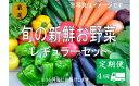 【ふるさと納税】No.1007 大人気!旬の新鮮お野菜 レギュラーセット(詰め合わせ)【定期便4回】