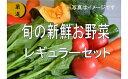 【ふるさと納税】No.1000 大人気!旬の新鮮お野菜 レギュラーセット(詰め合わせ)
