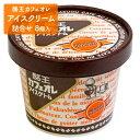 【ふるさと納税】【酪王牛乳】 酪王カフェオレアイスクリーム詰...
