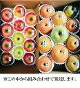 【ふるさと納税】北條農園のりんご・梨味比べ 大箱...