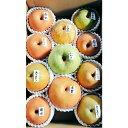 【ふるさと納税】北條農園の梨味比べ 大箱