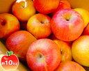 【ふるさと納税】No.021 りんご(サンふじ)特秀 約10kg / 林檎 リンゴ 果物 福島県 特産品