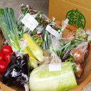 有機野菜セット季節の採れたて有機野菜(7〜8点)を農家から直送※