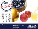 【ふるさと納税】 FT18-020 玉川村産果汁100%ジュ...