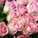 【ふるさと納税】生産農家直送!!お得な大輪のバラ 花束20本セット