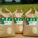 【ふるさと納税】AN02_平成29年古河市産 新米コシヒカリ15kg【倉持農園】