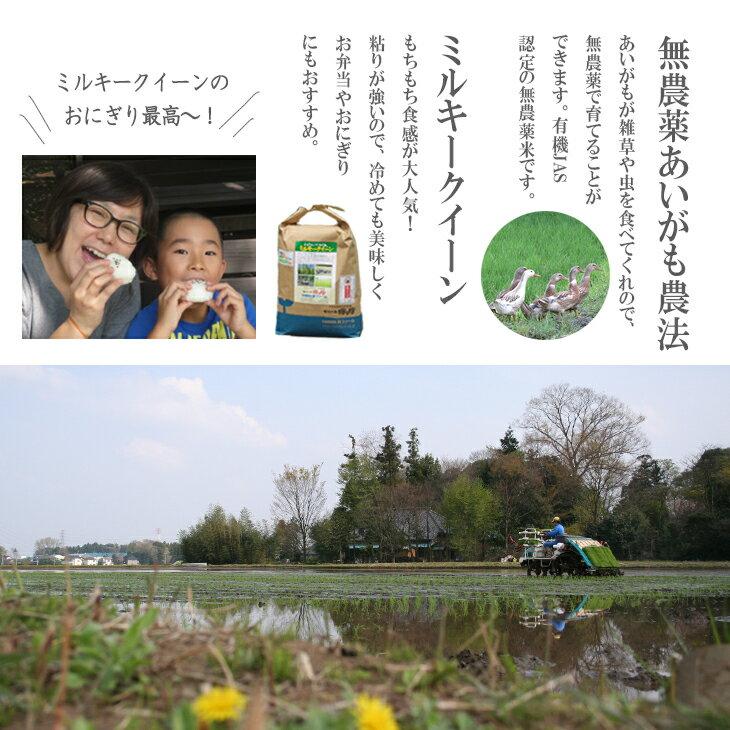 【ふるさと納税】BI07_ちょっと贅沢な秋の遊...の紹介画像3