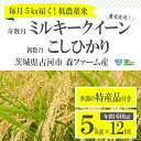 【ふるさと納税】BI03_1年間毎月届く!低農薬米こしひかり...