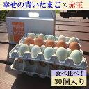 【ふるさと納税】AG07_江原ファーム 地養卵&アローカナハ...