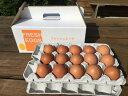 【ふるさと納税】AG03_江原ファーム 体に優しい地養卵(30個)...