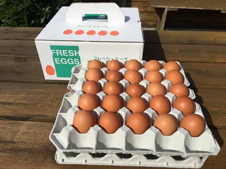 【ふるさと納税】AG04_江原ファーム 体に優しい地養卵(50個)